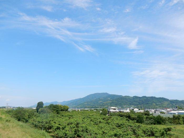 01_龍門山.jpg
