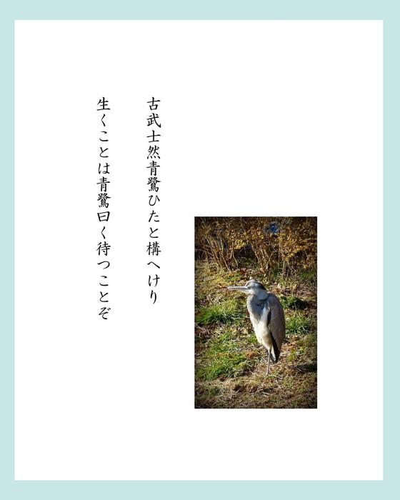 加川さん1.jpg