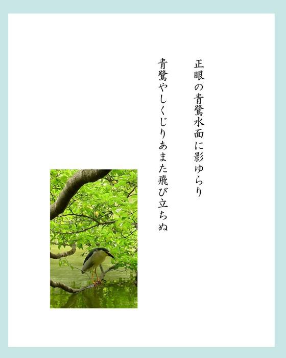 加川さん2.jpg