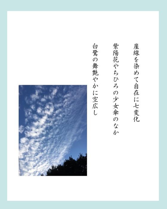 加川さん4.jpg