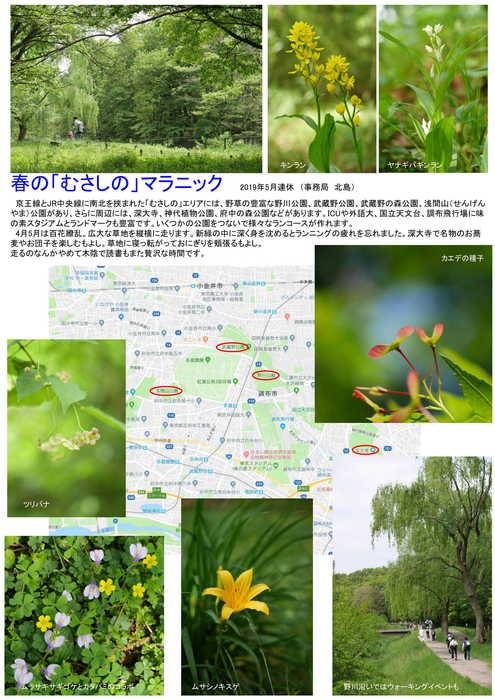 春の「むさしの」マラニック-1.jpg