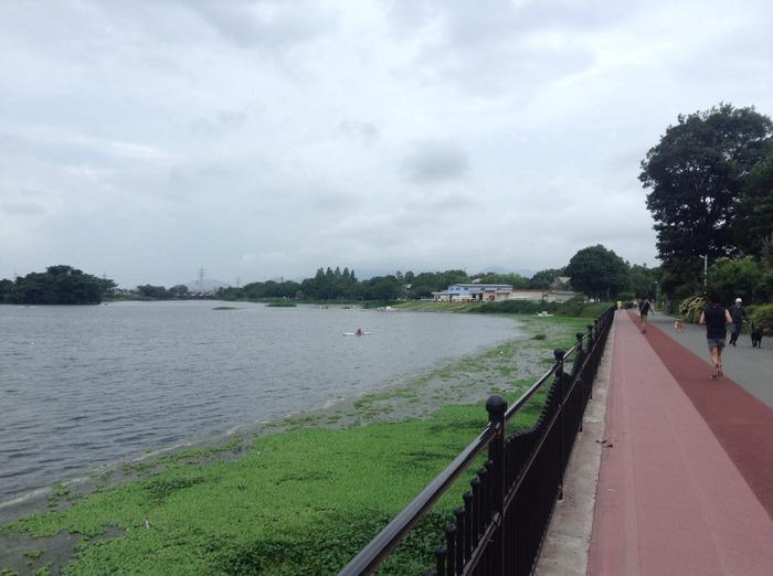 江津湖沿いのジョギングコース.jpg