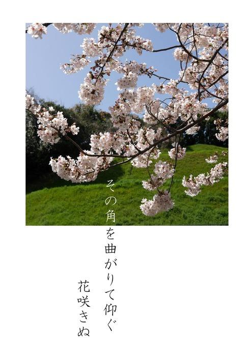 花はさくら_page-3.jpg