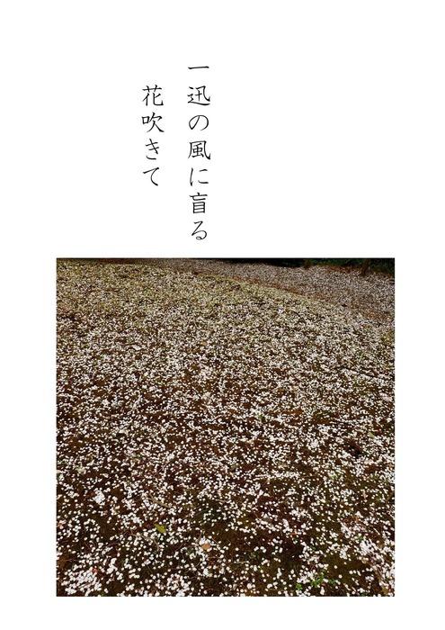 花はさくら_page-5.jpg